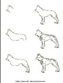 Easy to Draw Wolves Step by Step