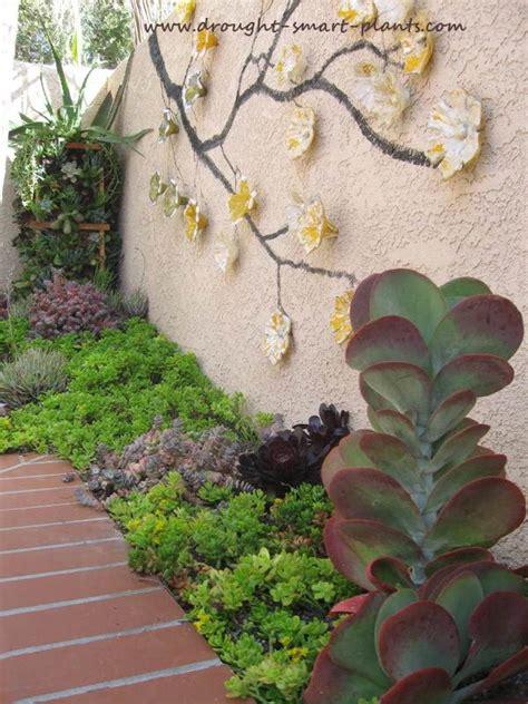 pocket gardens jewel  focal points   xeriscape