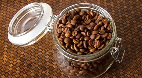 And how to you know if they've gone stale ? Best Coffee Storage Containers For 2020 • Bean Ground