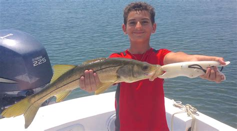 Charter Boat Fishing St Petersburg Fl by St Petersburg Ta Bay Fishing Charters Autos Post