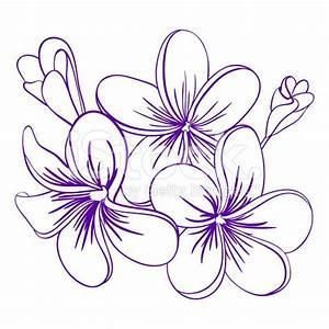 169 best Plumeria images on Pinterest | Tattoo ideas ...