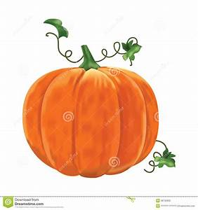 Pumpkin With Leaves On A White Background  Stock Vector