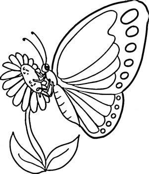 Coloring Kupu Kupu by Mewarnai Gambar Kupu Kupu Maksumwidodo S