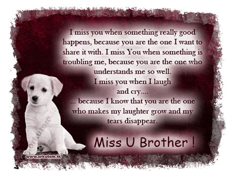 fast i miss you brother quotes death