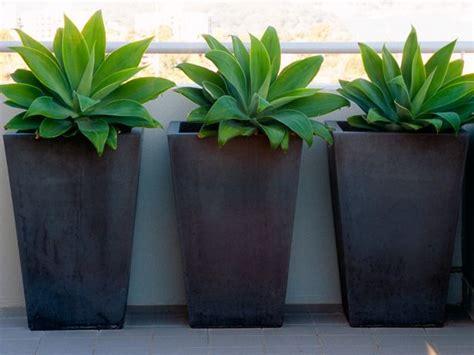 25+ Best Ideas About Black Planters On Pinterest