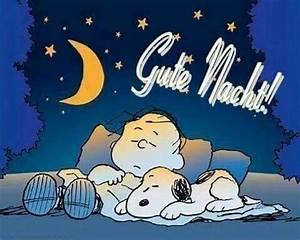 Freche Gute Nacht Bilder : 1155 besten gute nacht guten morgen bilder auf pinterest ~ Yasmunasinghe.com Haus und Dekorationen