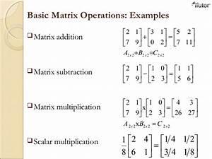 Linear Algebra and Matrix