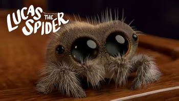 Lucas The Spider (web Video)  Tv Tropes