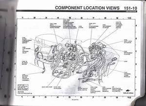 Ford Explorer Electrical Wiring Diagram