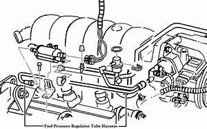 Genuine Gm Fuel Pressure Regulator Tube Harness 24506671