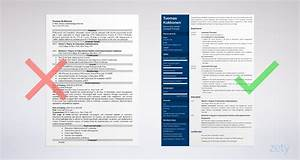 Nice Resume Templates Assistant Principal Resume Template Guide 20 Examples
