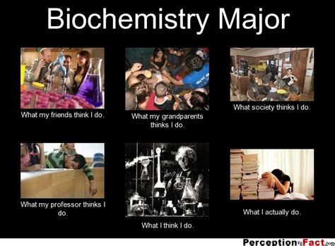 What I Do Meme - biochemistry major what people think i do what i really do perception vs fact