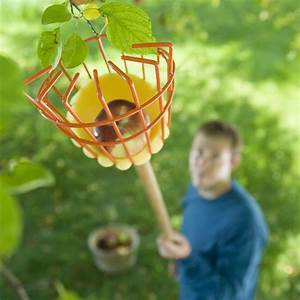 Tree Fruit Picker - The Green Head