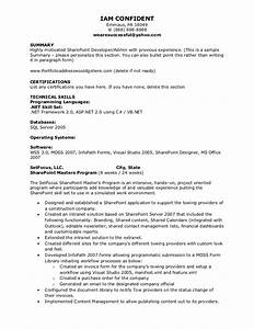 kleimeyer sharepoint resume With sharepoint sample resume developers