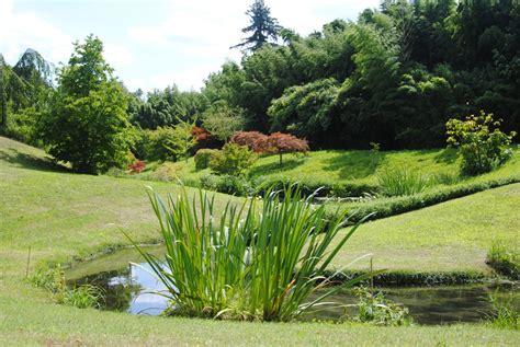 images gratuites paysage la nature herbe pelouse
