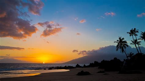 15  Best Things to do in Maui: What to See, Do, and Eat
