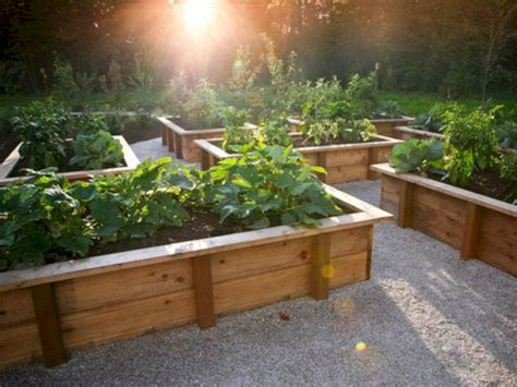 44 Diy Vegetable Garden Ideas