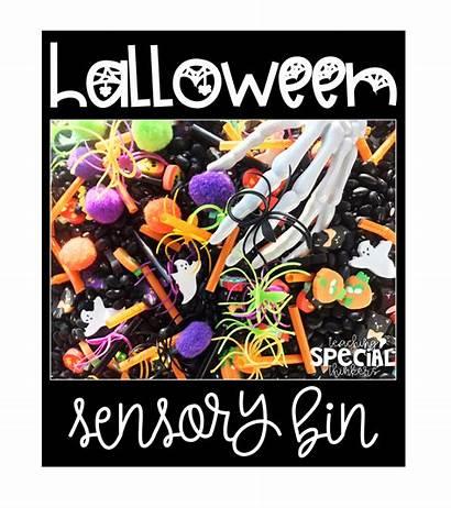 Sensory Halloween Bin October Bins