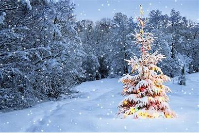Christmas Merry Animated Wallpapers Amazing Fresh Snow