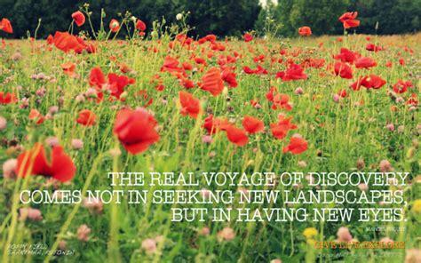 Poppy field quotes mightylinksfo