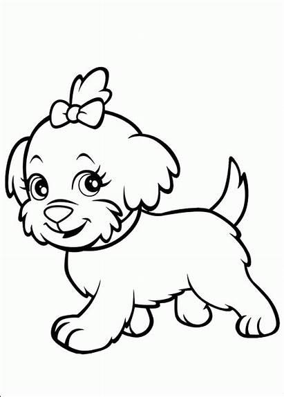 Coloring Pages Puppy Pets Pet
