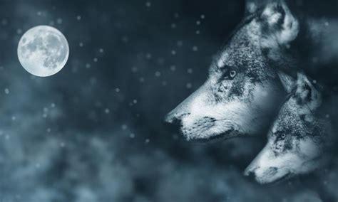 wolf moon   full moon  january
