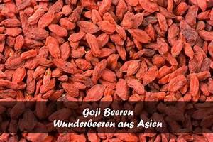 Goji Beeren Trocknen : goji beeren wunderfr chtchen aus asien lecker und gesund ~ Lizthompson.info Haus und Dekorationen