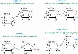 Chemistry Glossary: Search results for 'disaccharide'  Glucose