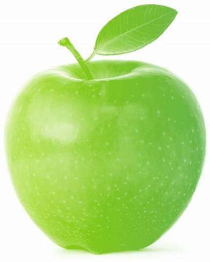 Apple Tree Business Care Clipart Creative Fruit