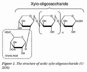 Acidic Xylooligosaccharide promotes reco | Biomedical Research