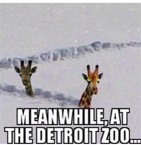 Funny Cold Meme - funny cold weather memes weathering fashion weather memes and activities pinterest