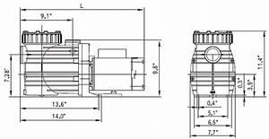 Speck E90 1 5 Hp Single Speed Pool Pump  E90-iii  - 2095156045