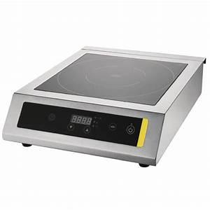 Grande Plaque Induction : plaque de cuisson induction simple ou double ~ Melissatoandfro.com Idées de Décoration