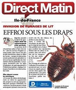 Produit Contre Les Punaises De Lit : produit contre puces maison ideas about anti puce maison ~ Dailycaller-alerts.com Idées de Décoration