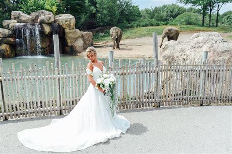wild romance  innovative organic wedding