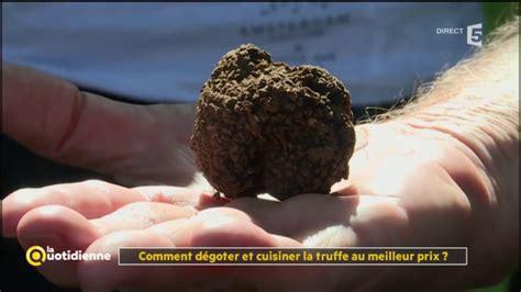 comment cuisiner les truffes noires comment dégoter et cuisiner la truffe au meilleur prix