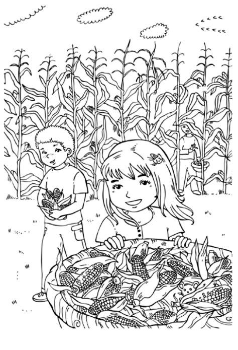 desenho de menina  milharal  colorir tudodesenhos