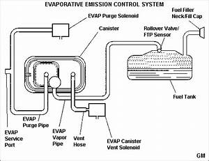 help with p0449 p0455 codes chevrolet forum chevy With the circuit can ne d vacuum diagram 1994 s10 blazer