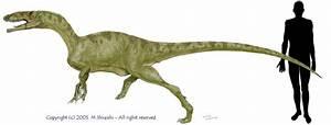 Gojirasaurus quayi | Gojipedia | FANDOM powered by Wikia