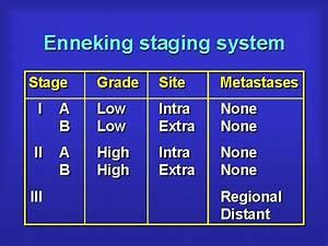 Enneking Staging System