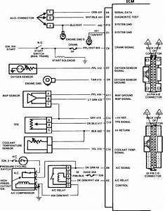 97 Blazer Ignition Switch Wiring Diagram