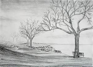 how to draw a forest with pencil - Google Search | Art ...