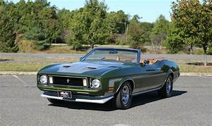 1973 Ford Mustang   Future Classics