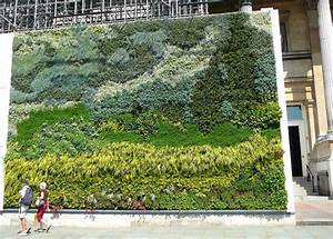 living wall products archives living walls and vertical With living wall art
