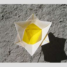Origami Daffodil  Please View My Profile For More Info On M… Flickr