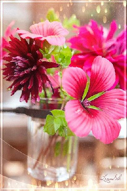 Animated Flowers Flower Animation Gifs Blooming Flores