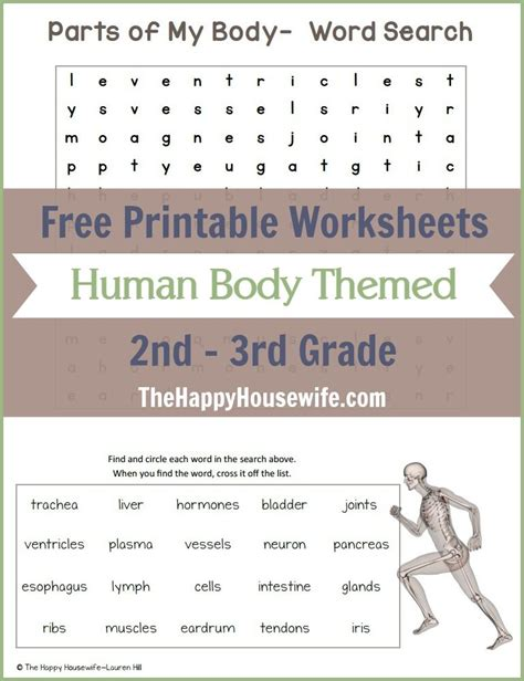 human themed worksheets free printables worksheets