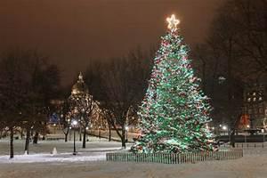 Christmas Snow Scenes [Slideshow]