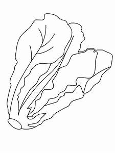 Lettuce coloring pages. Download and print Lettuce ...