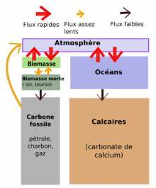 Controle Technique Carbonne : cycle du carbone wikip dia ~ Medecine-chirurgie-esthetiques.com Avis de Voitures